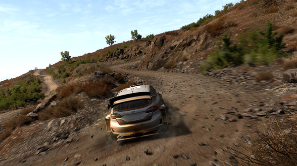 WRC driver hopefuls to compete in WRC 8